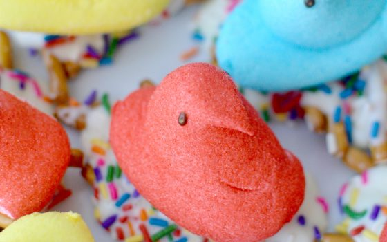 Peeps White Chocolate Pretzel Birds Nest