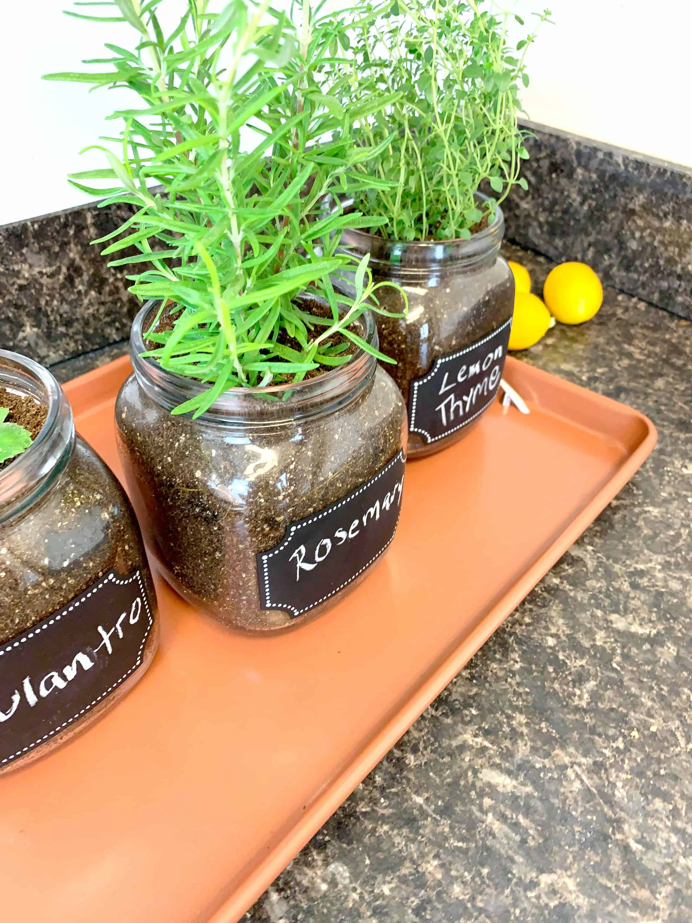 what to do with herbs from garden